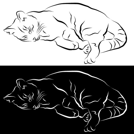 An image of a sleeping cat line drawing. Vector