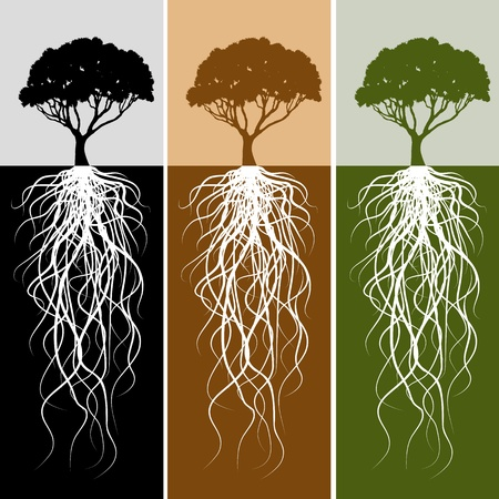 An image of a vertical tree root banner set. Stock Vector - 9629013