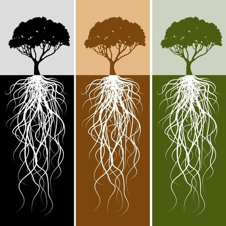 Een afbeelding van een verticale tree root banner instellen. Stock Illustratie