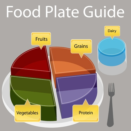 plate of food: An image of a food plate guide. Illustration