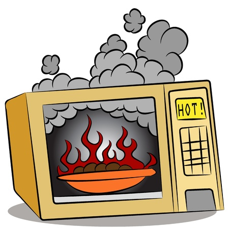 microwave oven: An image of food burning in a microwave oven.