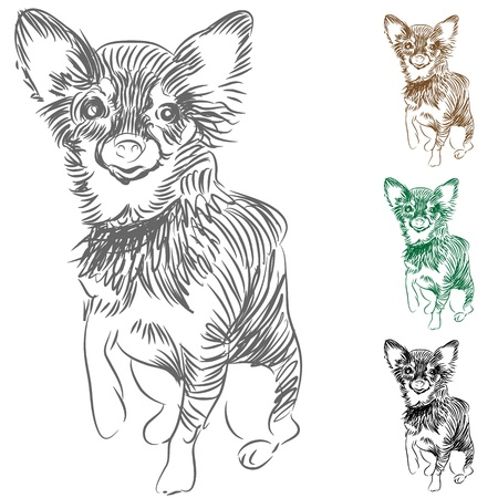 lines: An image of a Chihuahua dog drawing.