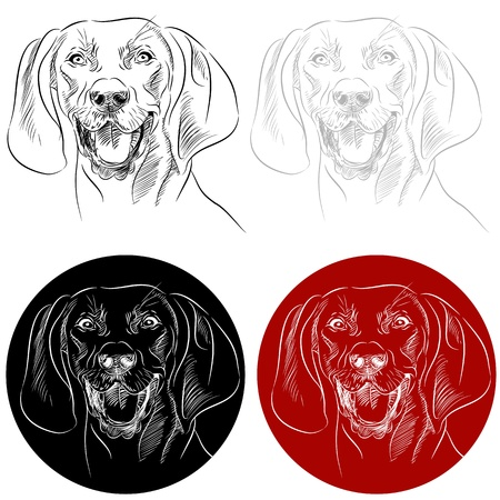 An image of the face of a Redbone Coonhound dog. Ilustração