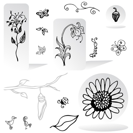 sunflower seeds: An image of a set of nature design elements.