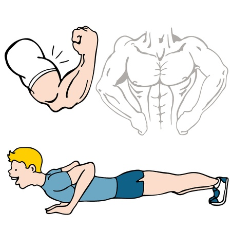 flexing: An image of a fitness set of images. Illustration