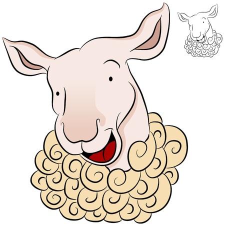An image of a sheep head.