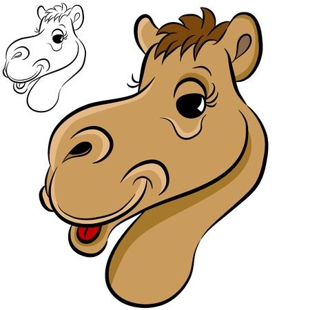 camello: Una imagen de una cara de camello.