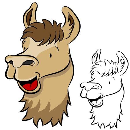 llama: An image of a llama face.