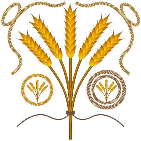 roped: Una imagen de bushel de trigo con la cuerda con las fronteras de la cuerda.
