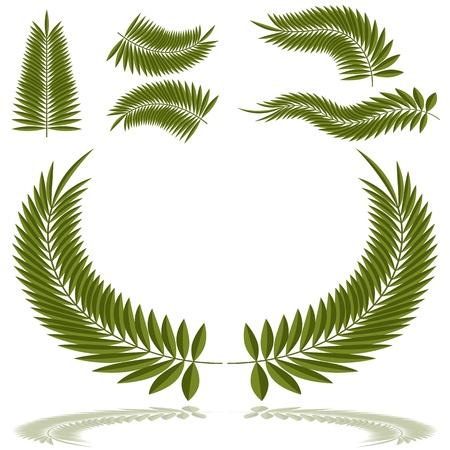 Ein Bild von einer Reihe von Palmwedeln.
