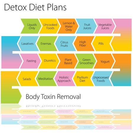 An image of a detox diet plan chart. Vector