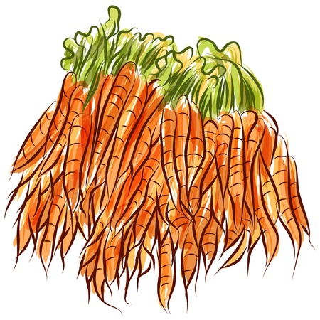 watercolour: An image of a carrot stack.