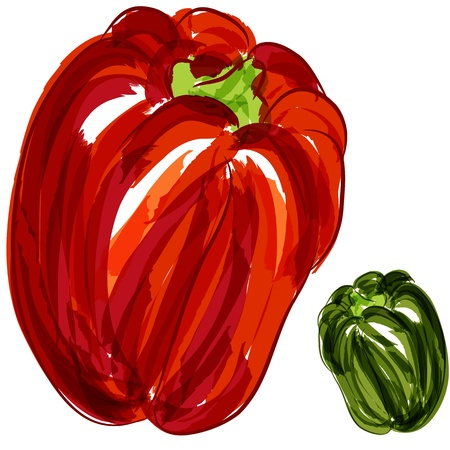 An image of a red and green bell peppers. Vector