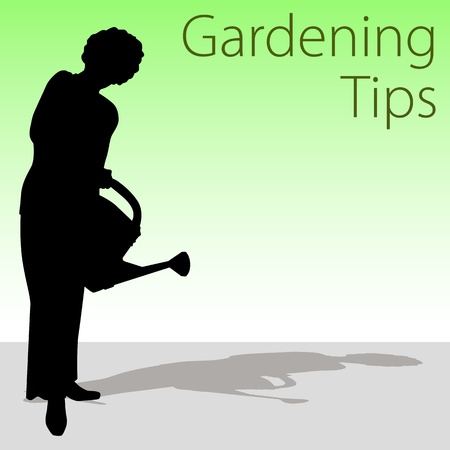 woman gardening: An image of a woman holding a watering can. Illustration