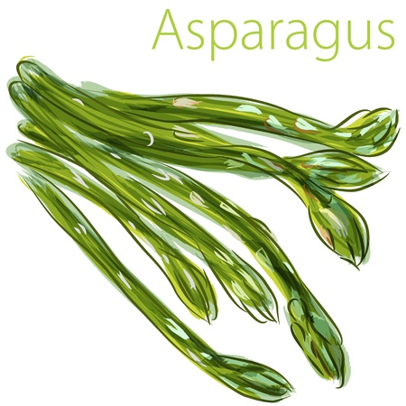 An image of a watercolor asparagus painting.