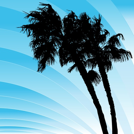 An image of a palms trees bending in the wind.
