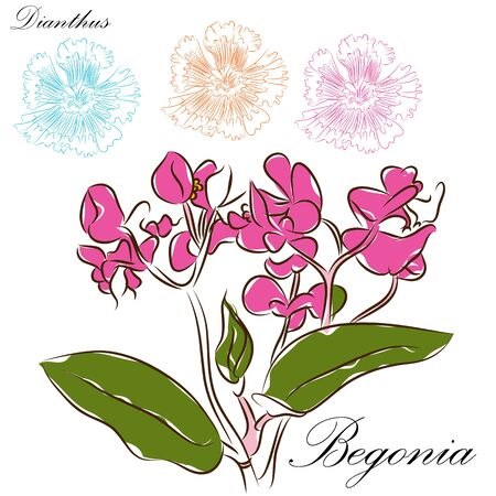 An image of a floral brush drawings. Çizim