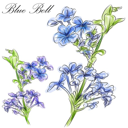 An image of a watercolor blue bell flower stem. Illustration