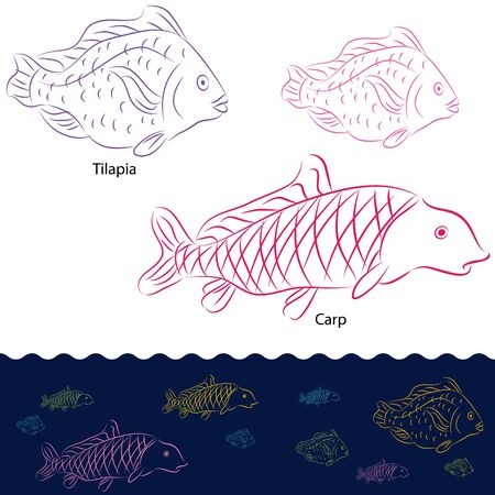 An image of a tilapia and carp fish set. Stock Vector - 12963413