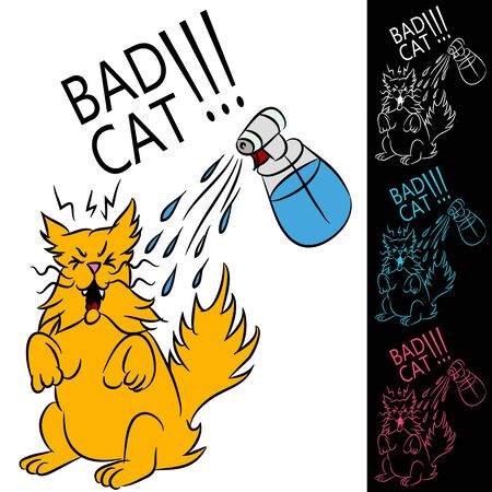 An image of a cat being sprayed with a water bottle. Vector