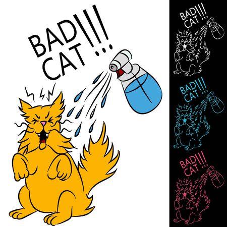pet bottles: Una imagen de un gato que se roc�a con una botella de agua.