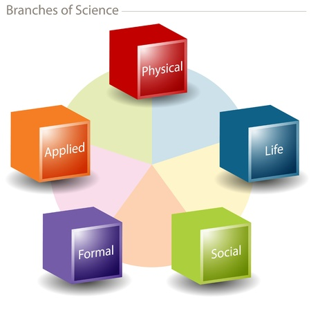 An image of a branches of science chart. Vector