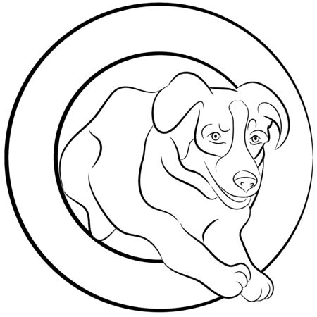 An image of a Border Collie dog jumping through a hoop. Illustration