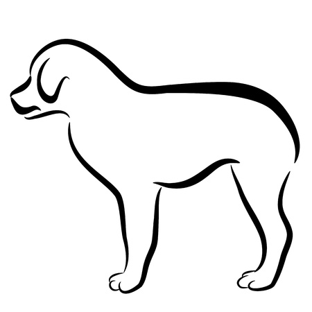 An image of an abstract elegant border collie dog profile. Vector