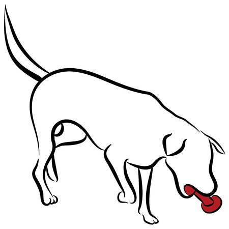 An image of an abstract elegant labrador dog. Vector