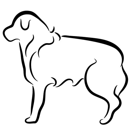 simple: An image of an abstract elegant border collie dog profile.