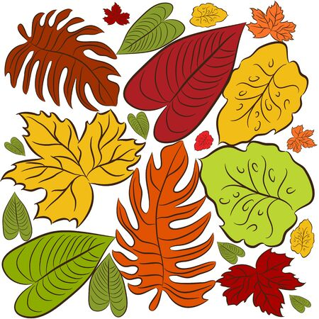 An image of a cluster of leaves background. Stock Vector - 14770198