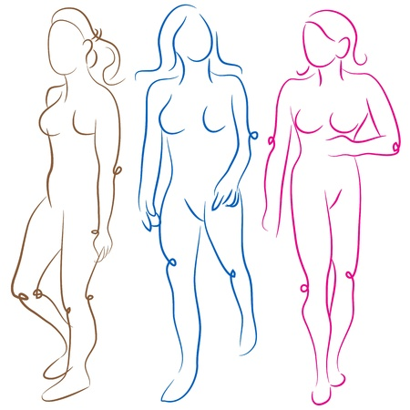 sizes: An image of a female body shapes set.