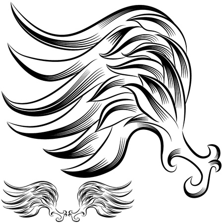 curving: An image of a wing flourish drawing. Illustration