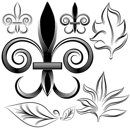 An image of a fleur leaf engraving set. Vector