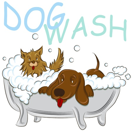 An image of a two clean dogs in a bathtub. Vector