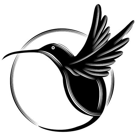 circles: An image of a black hummingbird.