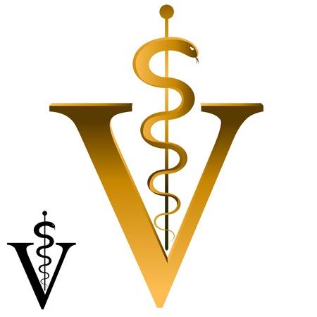 veterinario: Una imagen de un icono de veterinario.