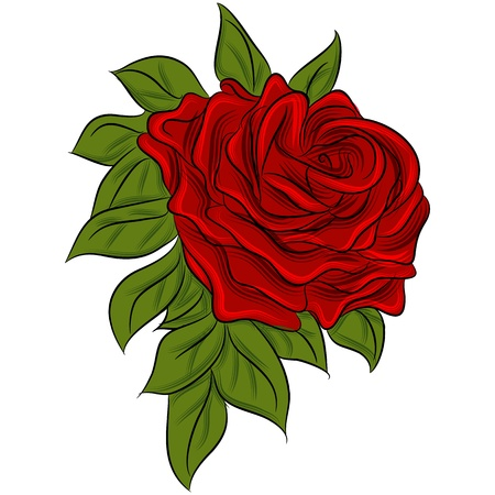 red rose: An image of a rose drawing.