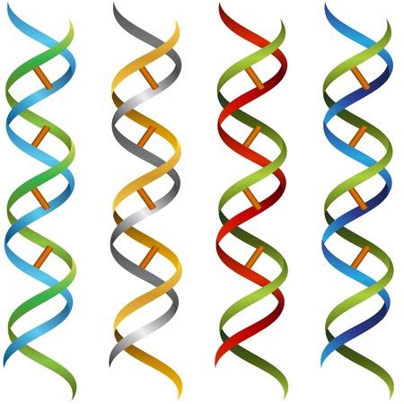 encodes: An image of a DNA ribbon set