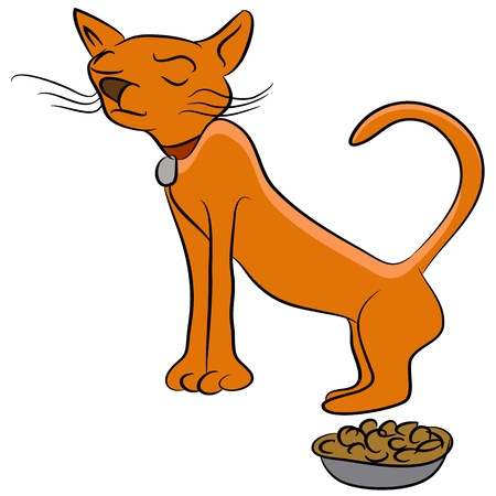 catfood: An image of a finicky cat who doesnt like his food. Illustration