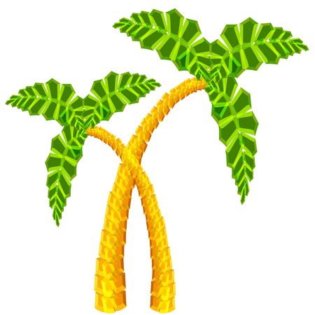 An image of two 3d palm trees. Vector