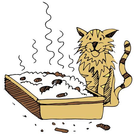 Una imagen de una caja de arena sucia y el gato.