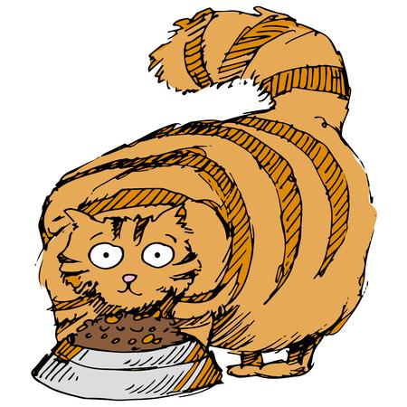 eating food: L'immagine di un gatto grasso mangiare cibo.