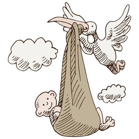 An image of a stork delivering a baby. Vector