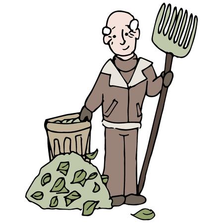 rake: An image of a senior man raking a pile of leaves in winter.