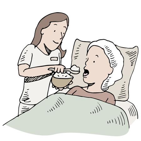 home care nurse: An image of a nurse feeding a patient. Illustration