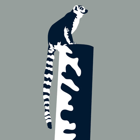 perched: An image of a lemur perched on a post. Illustration