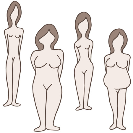 An image of a female body types. Stock Vector - 26573048
