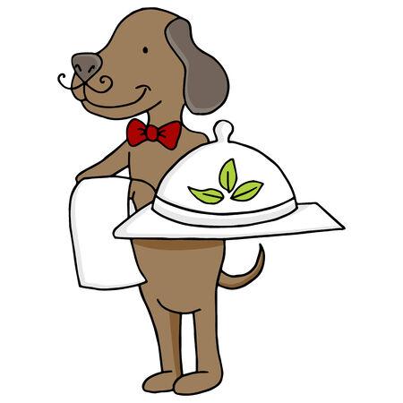 An image of a dog serving organic pet food.