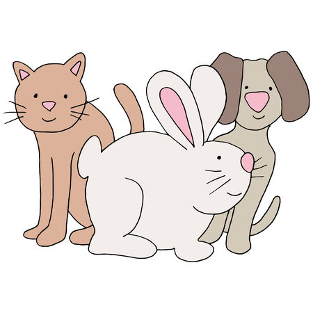 group of pets: An image of a cat, dog and rabbit.